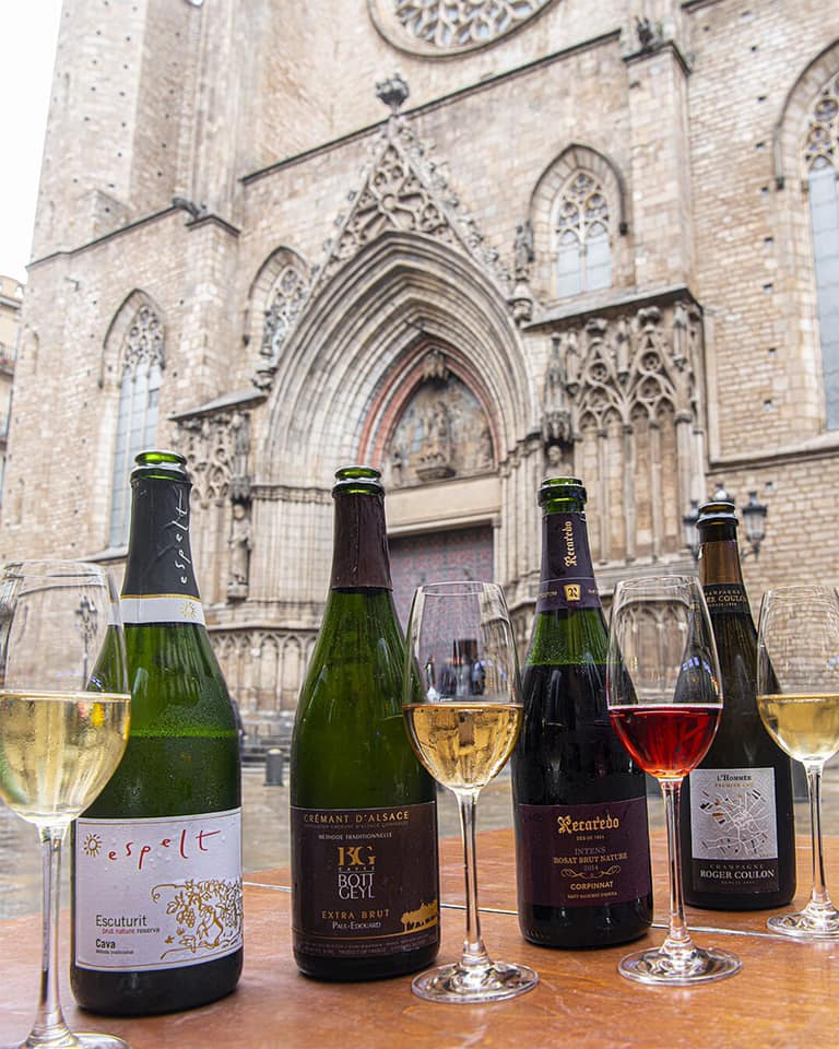 Vinya del Senyor