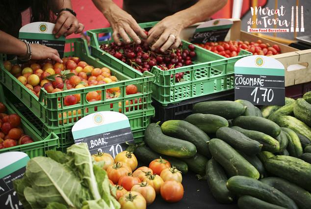 mercat de la terra slow food barcelona